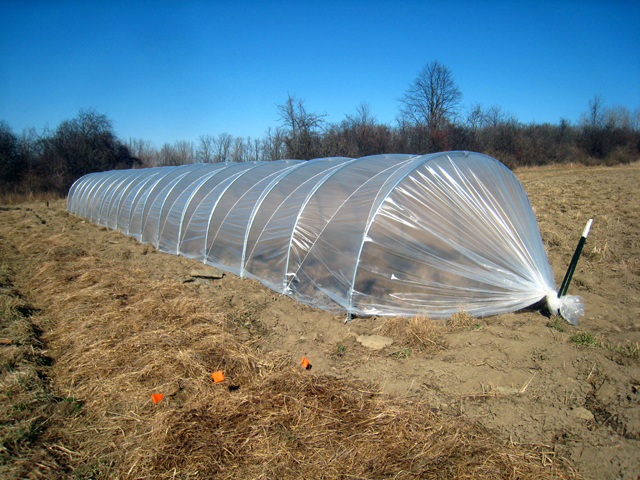 How to Build a Low Tunnel Greenhouse