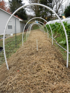 Hoops secured in ground. Photo source here.